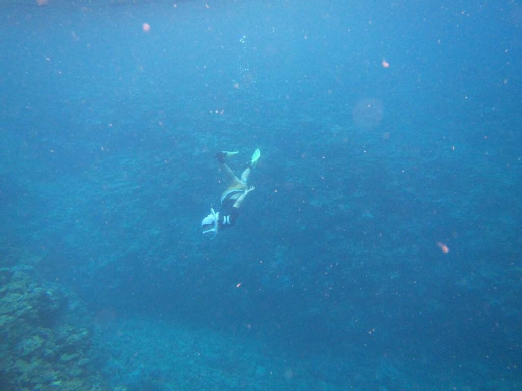 ガイドさんの防水デジカメで撮影