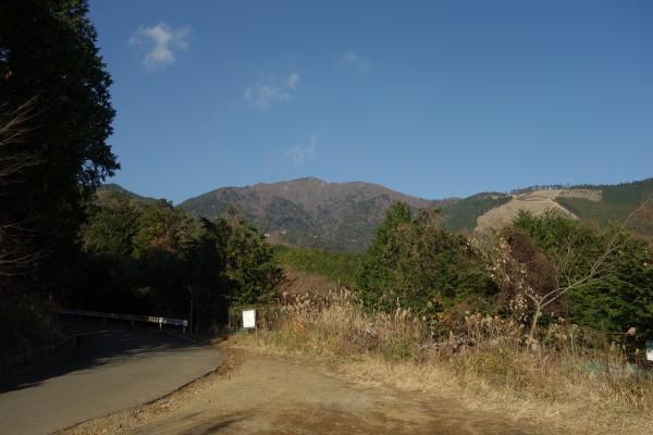 浅間山林道