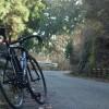 神奈川の林道、浅間山林道へ行ってきたら素敵だった話