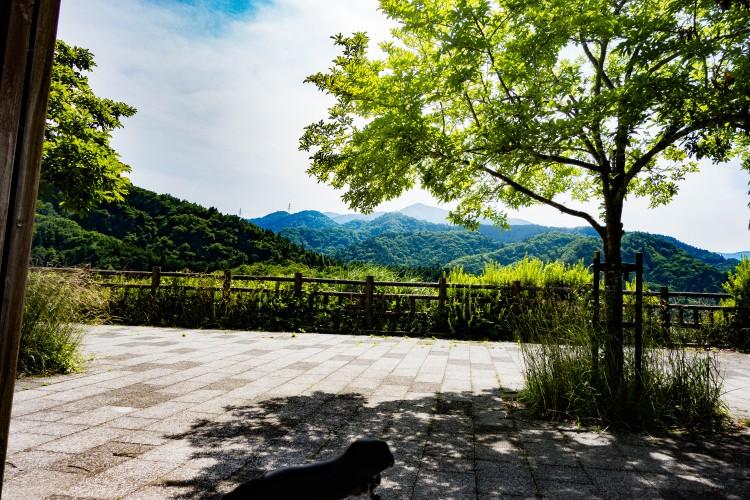 宮ケ瀬湖で休憩