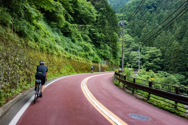 風張林道への道中