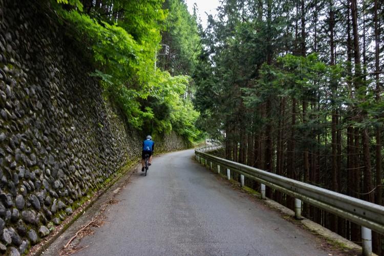 風張林道最初の区間