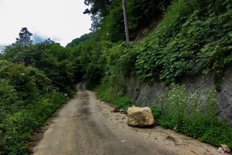 風張林道の落石